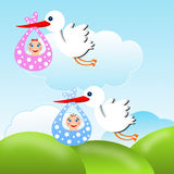 Storks carry babies on a background blue sky Stock Photos