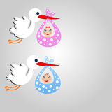 Storks carry babies on a grey background Royalty Free Stock Photo