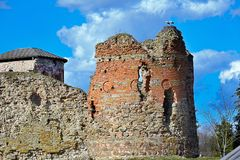 Storks at castle ruins Stock Photo