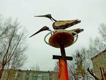 Storks i bygga bo royaltyfria bilder