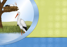 """Storks and Nest Background. On left side is an oval """"cut-out"""" scene of a pair of white stork birds, one is walking in the water. The other stork is sitting Stock Images"""