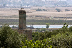 A storks nest caps the beautiful minaret at Chellah near Rabat in Morocco. Royalty Free Stock Photo