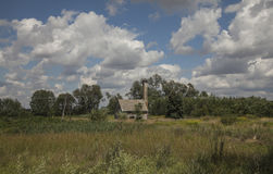 The storks. This picture shows a little house with a tall chimney and a nest with two storks on the top of it.  In the first ground you can see some tall grass Stock Image