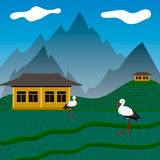 Storks on rise fields. In mountains Royalty Free Stock Image