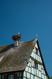 Storks on roof nest, France. Half-timbered house with stork nest on roof, France royalty free stock photos