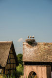 Storks on roof nest, France. Half-timbered house with stork nest on roof, France stock photography