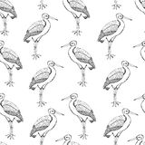 Storks seamless pattern. Creative black birds on the white background. Hand draw Royalty Free Stock Photography
