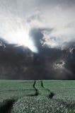 Storm. Stock Photo
