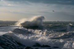 Free Storm Stock Photo - 1800250
