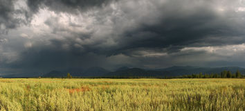 Before the storm. Landscape with stormy clouds. 4-shots panorama Stock Photography
