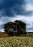 storm 3 Arkivfoto