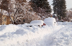 After the storm. Cars buried in the snow, the day after a record snowfall in Spokane, Washington Stock Images