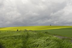 Before the Storm. Spring meadows and yellow rape fields just before a heavy thunderstorm in the hilly part of the Palatinate area of Germany Royalty Free Stock Image