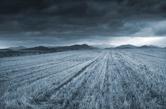 Before The Storm. Depressed picture of field and strong clouds Royalty Free Stock Photography