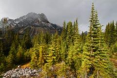 Storm Approaches Jasper National Park Royalty Free Stock Photos