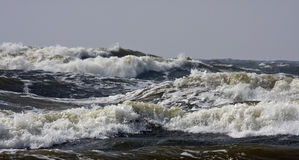 Storm. On the Baltic sea Stock Images