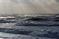 Storm. On the Baltic sea Stock Photos