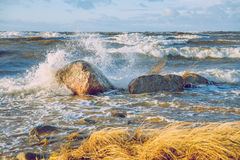 Storm in Baltic Sea. Royalty Free Stock Photo