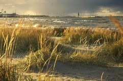 Storm at the Baltic sea shore Stock Image