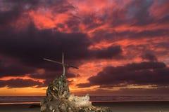 Storm Beach Salvation stock photo