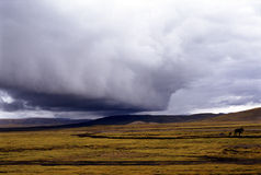 Storm big cloud,supercell. It is a terrible storm, supercell. loaction is in Tibet of China. (use Koda positive film E100vs Royalty Free Stock Photography