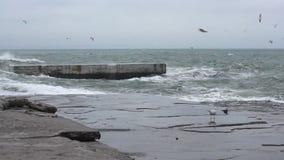 Storm_black_sea_1790_HD stock video footage
