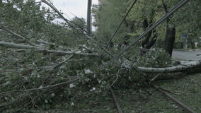 The storm caused severe damage to electric poles falling tilt. stock video