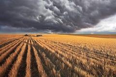 The  storm cloud Royalty Free Stock Photos
