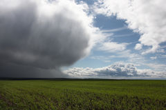 Storm cloud over green field Stock Image