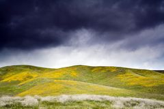 Storm clouds. Dark storm clouds over the spring hill in bloom Stock Image