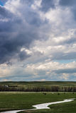 Storm clouds above field of green grass. Storm clouds over prairie meadow field of green grass and rolling hills located in the Colorado eastern plains / Kansas Royalty Free Stock Photos