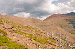 Storm clouds above treeline Stock Photo
