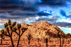 Desert and Dark Skies in the Desert. Storm clouds approach as some amazing light streaks across the desert floor Stock Images