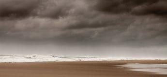 Assateague national Wildlife refuge beach. stock photo