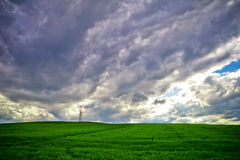 Storm clouds and field of wheat Stock Images