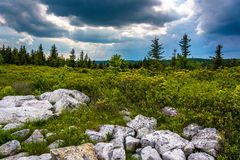 Storm clouds over Bear Rocks Preserve, Monongahela National Fore Stock Photo