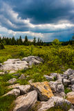 Storm clouds over Bear Rocks Preserve, Monongahela National Fore Stock Image