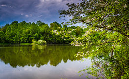 Storm clouds over Centennial Lake at Centennial Park in Columbia royalty free stock photos