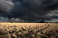 Storm clouds over desert grassland stock images