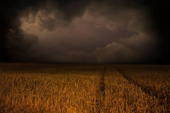 Storm clouds over field. Dramatic views stock photography