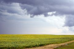 Storm Clouds Over Field Stock Photo
