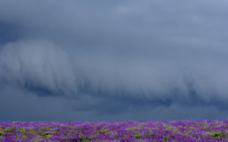 Storm clouds over a field Stock Photography