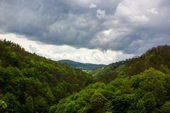 Storm clouds over the forest. Stock Images