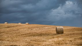 Storm clouds over golden field with bales. A view of open farmland. The photograph shows golden bales of straw in a field set against a dark stormy sky. There is Stock Images