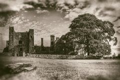 Ruins of old abbey with large tree and foreground logs in monochrome - vintage photography stock image