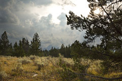 Storm clouds over sagebrush, pine trees, and distant mountains, Jackson Hole, Wyoming. Royalty Free Stock Images