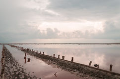 Storm clouds over the salty pink lake. Storm clouds over the pink salt lake on Arabatskaya arrow in the Ukraine stock photo