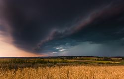 Storm clouds over wheat field. Stock Photography