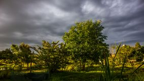 Storm clouds in the park.Uruguay. Nubes de tormenta en parque de Uruguay,Maldonado stock photo