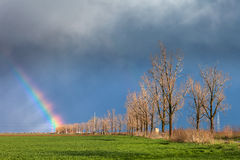 Storm clouds with a rainbow and road with trees Royalty Free Stock Photos